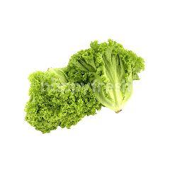Veggy Star Rinse And Serve Crunchy Salad