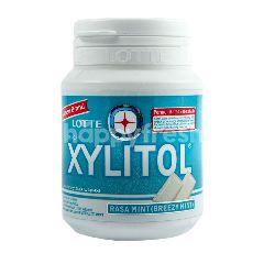 Lotte Xylitol Breezy Mint