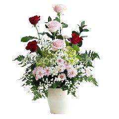 Emme Florist Scarlett & BonBon