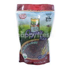 Pure Green Beras Hitam Organik