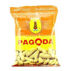 Pagoda Shandong Roasted Groundnuts