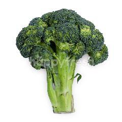 Brokoli Impor