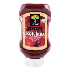 Tree of Life Organic Ketchup