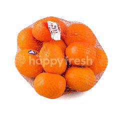 Jeruk Mandarin Afourer Australia