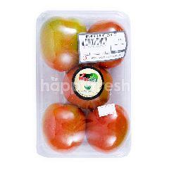 Masada Tomat Sayur Organik