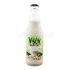 V-Soy Multi Grain