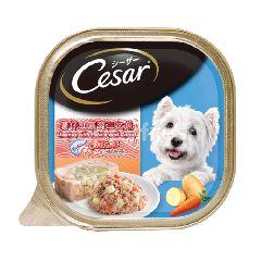 Cesar Dog Food Adult Salmon With Potato & Carrot 100G Dog Wet Food