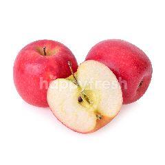 Washington Premium Grade Red Apple (Epal Merah)