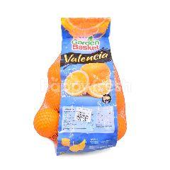Garden Basket Valencia Navel Sunkist Orange