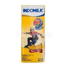 Indomilk Susu UHT Rasa Pisang