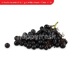เทสโก้ องุ่นดำไร้เมล็ด น้ำหนักประมาณ 500 กรัม