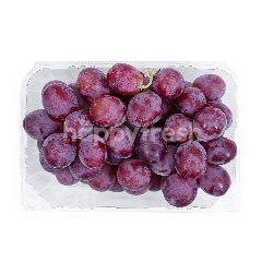 Anggur Autumn