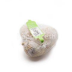 Australian White Onion