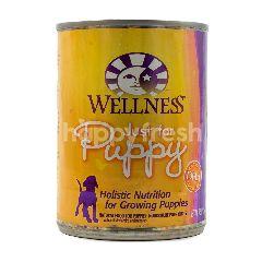 Wellness Makanan Anjing Just for Puppy