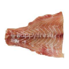 Fillet Ikan Kakap Merah