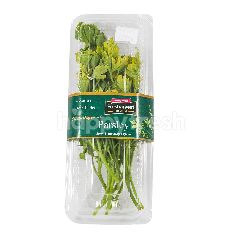 Fresharvest Premium Daun Parsley