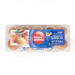 Prima Telur Rendah Kolesterol