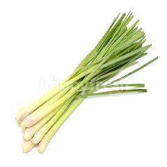 Eco Harvest Lemongrass (3 Pieces)