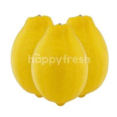 Lemon (3 Pieces)
