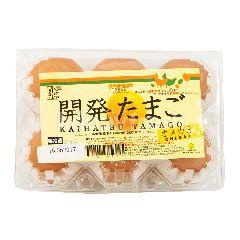 Kaihatsu Tamago Telur Omega 3