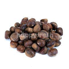 Chesnut Kulit