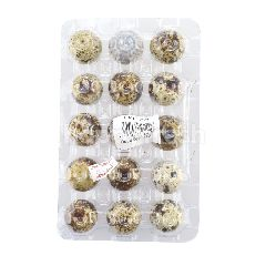 LKH-ED Quail Eggs (15 Pieces)