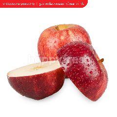 บิ๊กซี แอปเปิ้ลกาล่า แพค 8