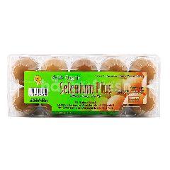 LTK Organic Selenium Plus Eggs