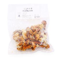 Yolek Dried Brazil Mushroom