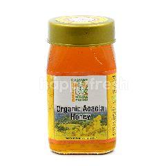 Radiant Organic Acacia Honey 500g