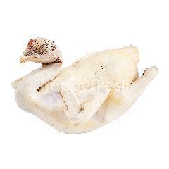 กูร์เมต์ มาร์เก็ต ไก่ประดู่หางดำต้ม
