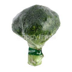 Brokoli Cina