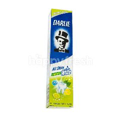 Darlie Shiny White Lime Mint