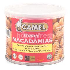 Camel Honey Macadamias