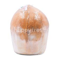 Cocobiz Aroma Coconut