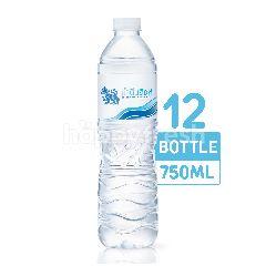 สิงห์ น้ำดื่ม 750 มล. (แพ็ค 12)