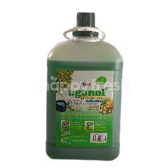 Aganol Pembersih Lantai Anti Bakteri Morning Fresh