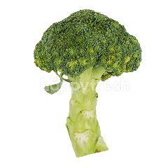 Amani Brokoli Organik