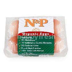 เนเชอรัล & พรีเมี่ยม ฟู้ด ไข่ไก่สด ออร์แกนิก (6 ฟอง)