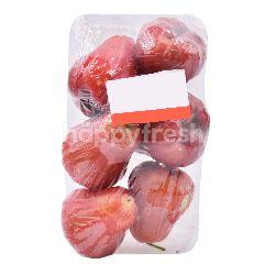 Thai Watery Rose Apple
