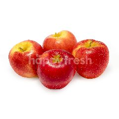South Africa Cripps Red Apple (10 Pieces)