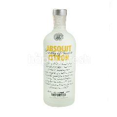 Absolut Vodka Rasa Citrun