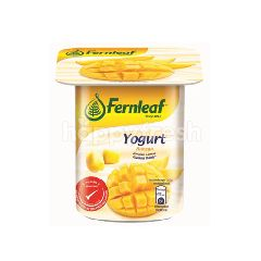 Fernleaf Mango Flavoured Yogurt
