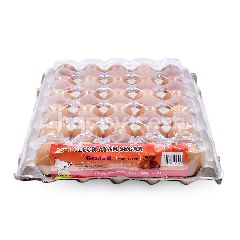 LKH Egg Grade B 30s