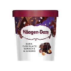 Häagen-Dazs Dark Chocolate Ganache & Almond Ice Cream