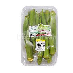 D Lonek Organic Premium Okra (Bendi)