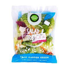 Amazing Farm Salad To Go Crisp Garden Green