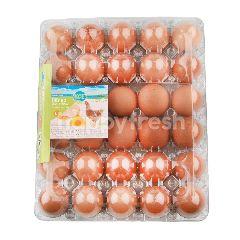 เคซีเอฟ ไข่ไก่สด ไซส์ L แพ็ค