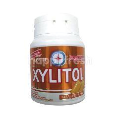 Lotte Xylitol Orang Mint