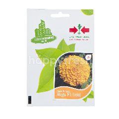 Urban Farming Seeds Cap Panah Merah Mega F1 Gold Bibit Bunga Marigold